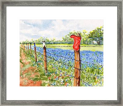 Texas Bluebonnets Boot Fence Framed Print