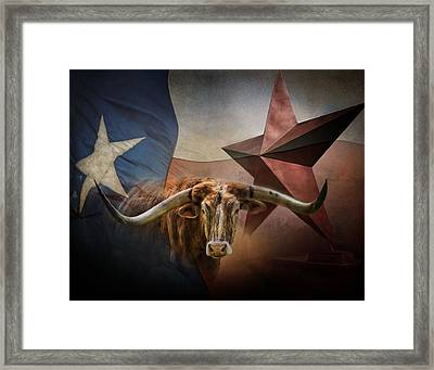 Texas Framed Print by David and Carol Kelly
