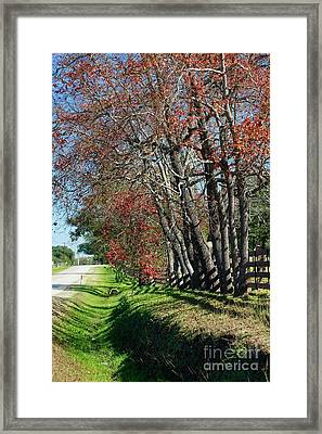 Framed Print featuring the photograph Texas Fall by Lori Mellen-Pagliaro