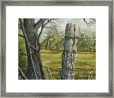 Texas Fence Post Framed Print by Don Bosley