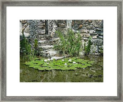 Texas Guadalupe River Framed Print