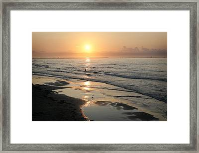Texas Gulf Coast At Sunrise Framed Print by Marilyn Hunt