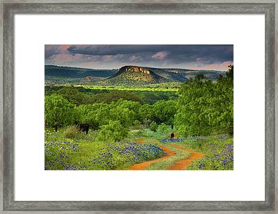 Texas Hill Country Ranch Road Framed Print