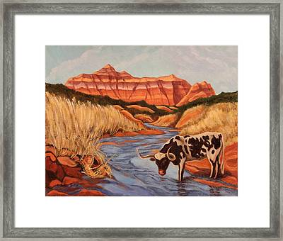 Texas Longhorn In Palo Duro Canyon Framed Print