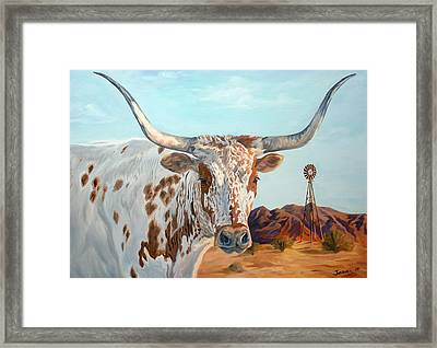 Texas Longhorn Framed Print by Jana Goode