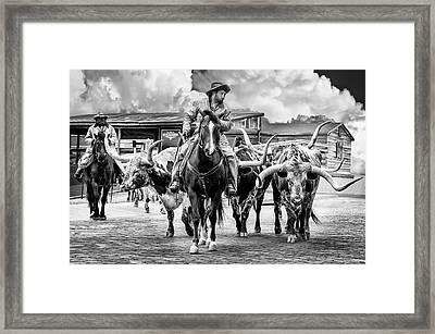 Texas Longhorns Framed Print by Kelley King
