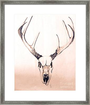 Texas Mount Deer Framed Print