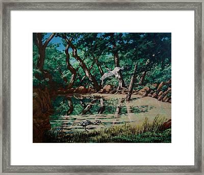 Texas Pond Framed Print by David  Larcom