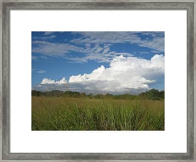 Texas Prairie Framed Print by Rebecca Shupp