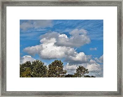 Framed Print featuring the photograph Texas - Reach For The Sky.   by Ray Shrewsberry