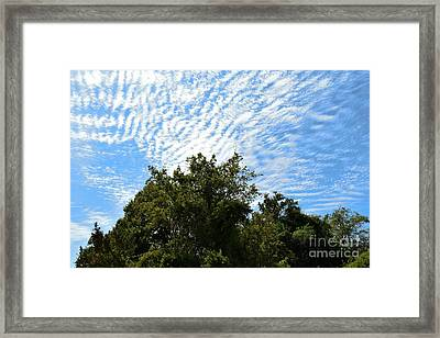 Framed Print featuring the photograph Texas Scene - Midday  by Ray Shrewsberry