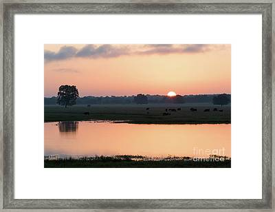 Texas Sunrise Framed Print
