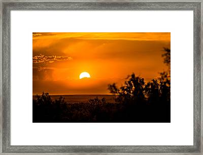 Texas Tangerine Framed Print