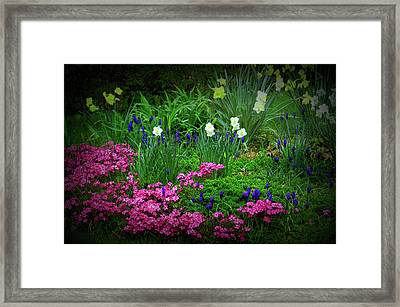 Framed Print featuring the photograph Texture Drama Garden Escape by Aimee L Maher Photography and Art Visit ALMGallerydotcom
