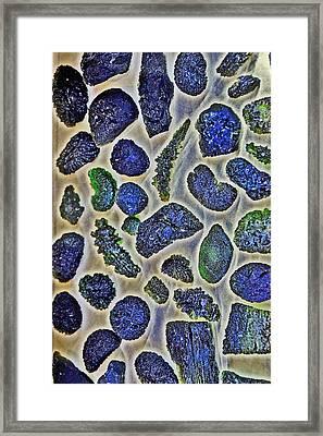 Texture Moldavite.  Framed Print
