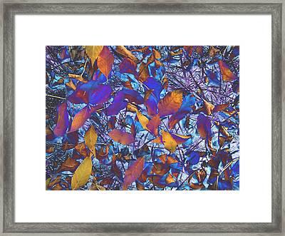 Textured Blue Framed Print by Beth Akerman