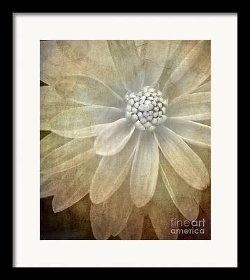 Textured Floral Framed Prints