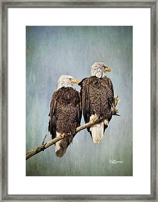 Textured Eagles Framed Print