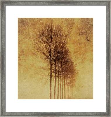 Framed Print featuring the mixed media Textured Eerie Trees by Dan Sproul