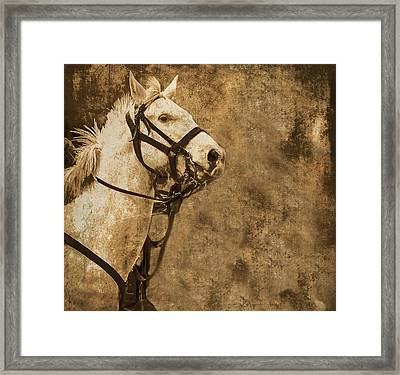 Textured Horse Framed Print