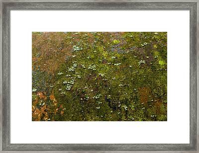 Textured Landscape Framed Print