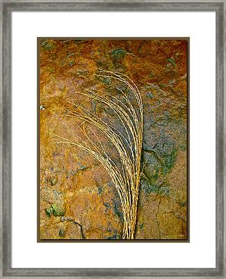 Textured Nature Framed Print