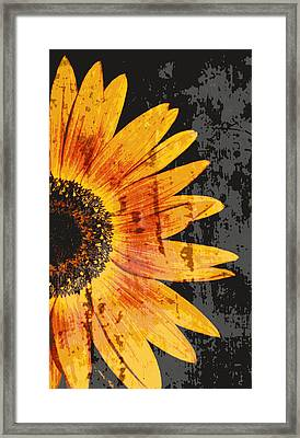 Textured Sunflower Framed Print
