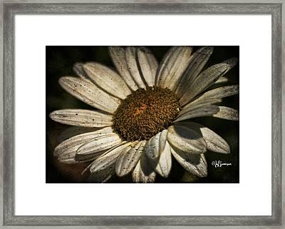Textured White Flower Framed Print
