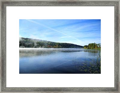 Textures Framed Print by Tom Heeter