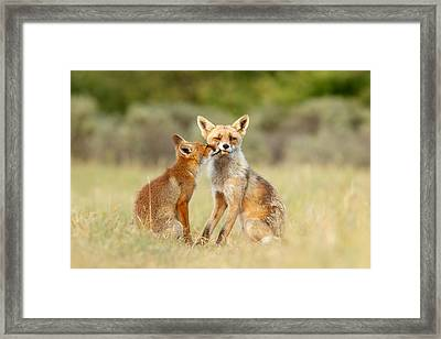 Thank God It's Friday - Fox Love Framed Print by Roeselien Raimond