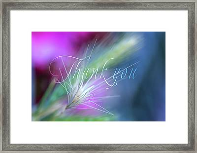 Thank You 5 Framed Print by Terry Davis