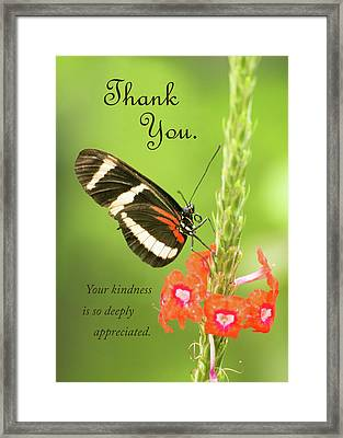 Thank You - Butterfly Framed Print
