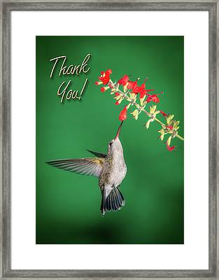Thank You - Looking Up Framed Print