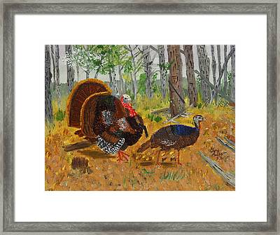 Thanksgiving Turkey Framed Print