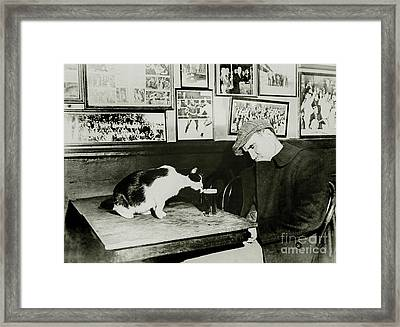 That Cat Drinking Beer Framed Print