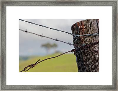 That Country Feel Framed Print