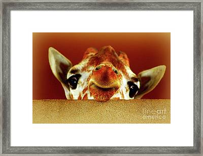 That Face Though Framed Print