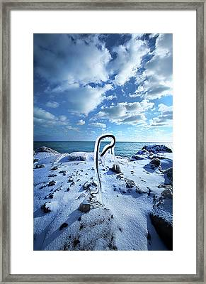 Framed Print featuring the photograph That One Weird Thing by Phil Koch