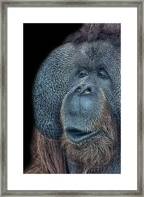 That Oooh Moment Framed Print
