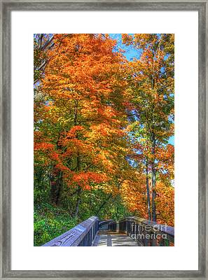 That Special Walk Framed Print