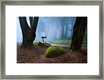 That Way Framed Print by Jorge Maia