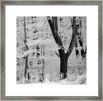That Winter Framed Print by Odd Jeppesen
