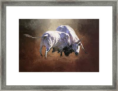 Framed Print featuring the photograph That's A Lot Of Bull by Donna Kennedy