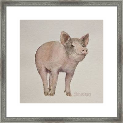 That's Some Pig Framed Print by Teresa Silvestri