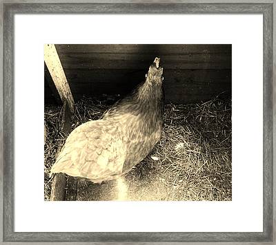 That's Your A Framed Print