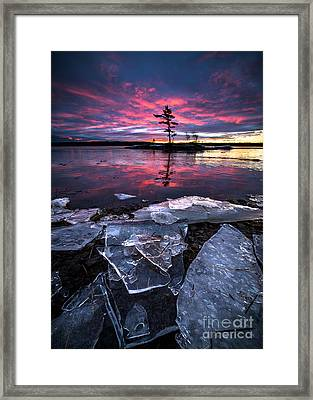 Thaw Framed Print by Benjamin Williamson