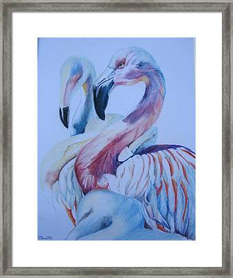 The 3 Flamingos Framed Print