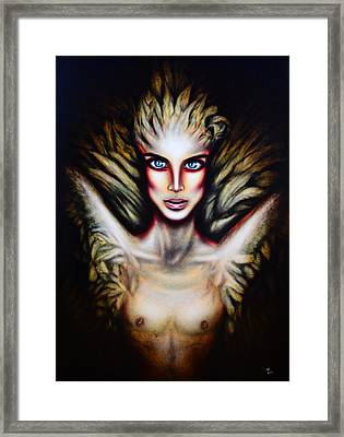 The 6th Swan Framed Print by Tiago Azevedo