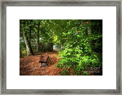 The Abbey's Bench 2 Framed Print
