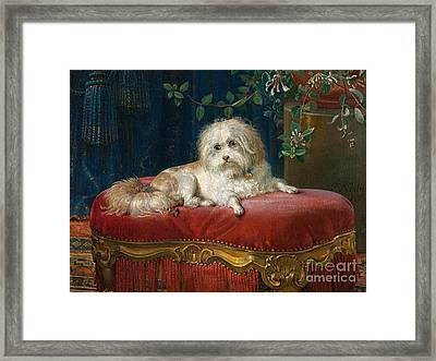 The Accomplice Framed Print by MotionAge Designs